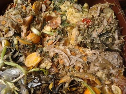 biodegradable kitchen waste komunalna dejavnost bled